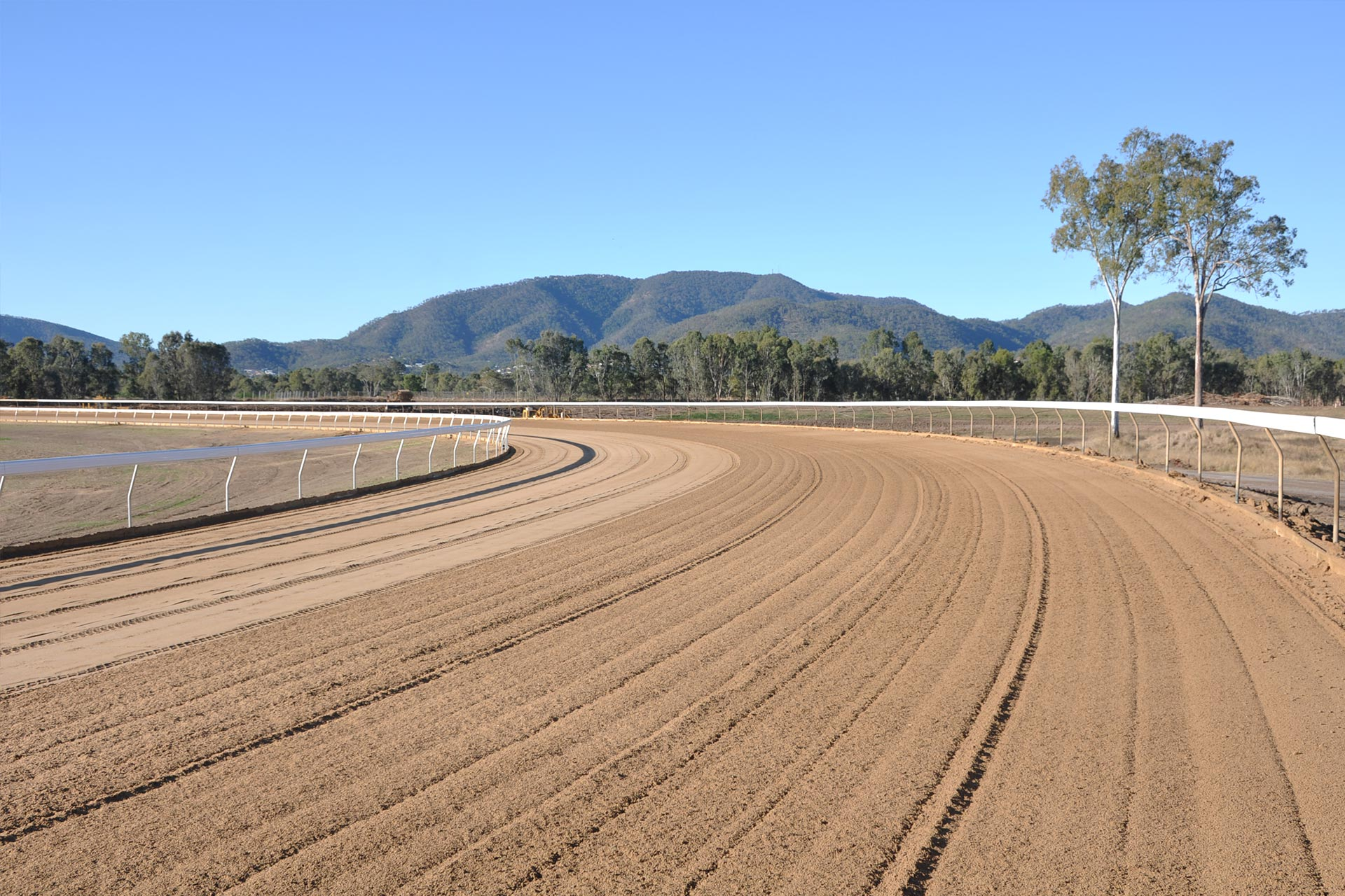 callaghan-park-racecourse-3